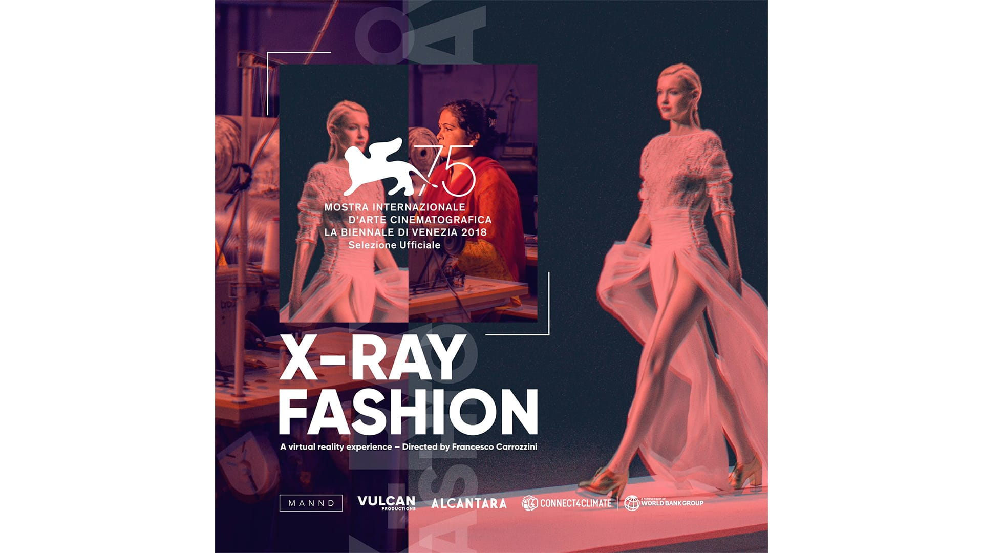 alcantara-x-ray-fashion -