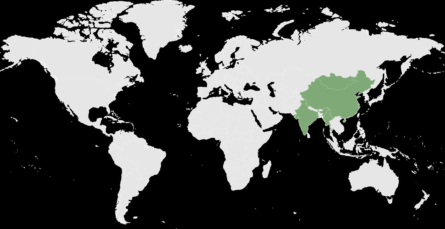 FY 2021